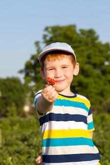 Un garçon mange des fraises et tient des baies dans ses mains, un portrait d'un enfant en été en mangeant