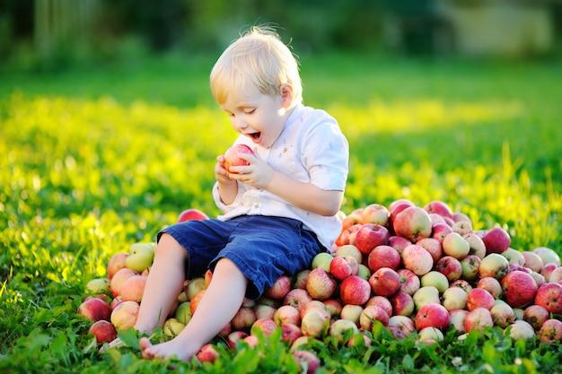 Garçon mignon bambin assis sur un tas de pommes et de manger des pommes mûres dans le jardin domestique