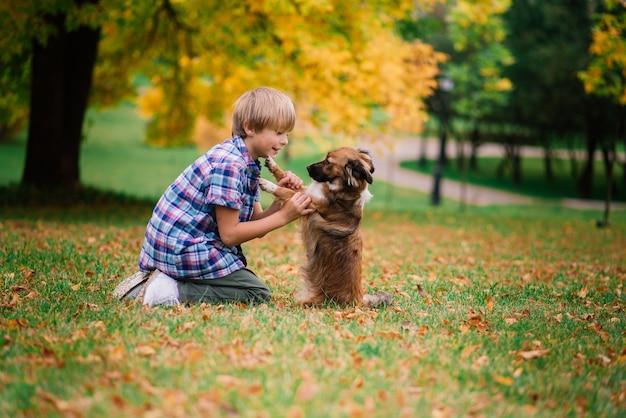 Garçon mignon jouant et marchant avec son chien dans le pré.
