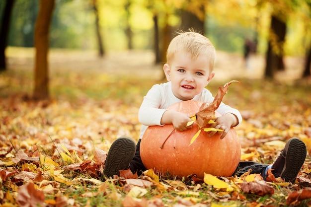 Garçon petit bambin s'amuser avec citrouille orange en automne parc.