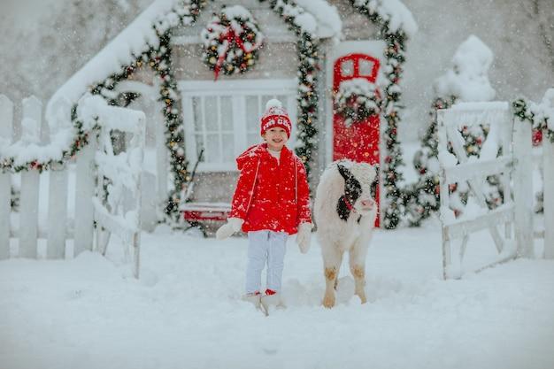 Garçon posant avec petit taureau noir et blanc au ranch d'hiver avec décor de noël.