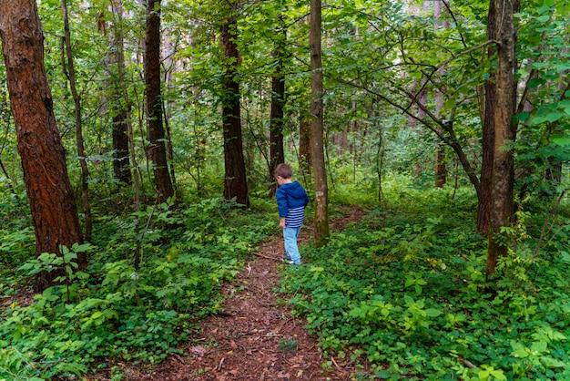 Garçon se promène dans les bois. il marche le long de la route forestière et regarde les buissons et les arbres