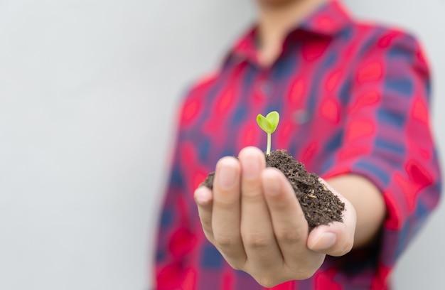 Garçon tenant une plante dans les mains