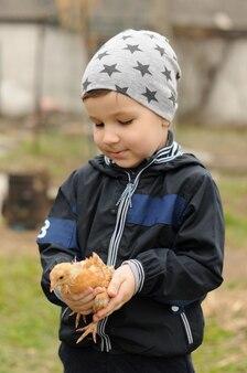 Garçon tout-petit avec un petit poulet à la main à la ferme