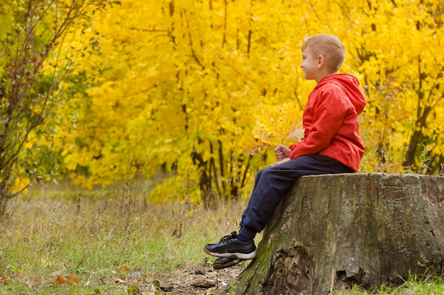 Garçon en veste rouge assis sur une souche d'arbre dans la forêt d'automne. vue de côté