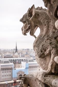 Gargouille au mur de corniche dans l'église not-re dame à paris