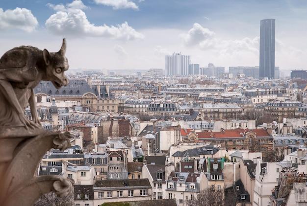 Gargouille de la cathédrale de notre dame et paysage urbain