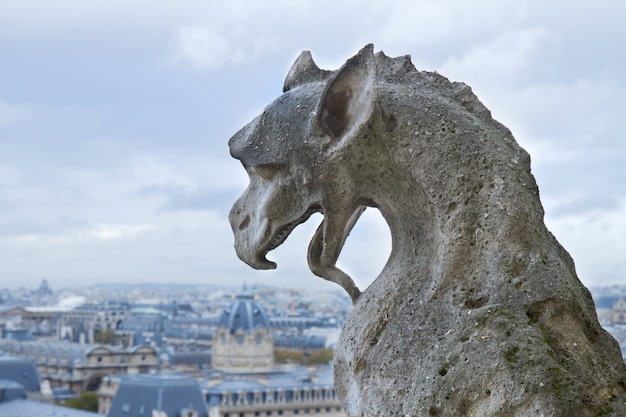Gargouille de l'église cathédrale notre-dame, paris, france