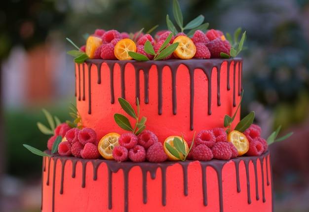 Gâteau en deux niveaux avec crème rouge et framboise sur une table en bois blanche dans le jardin d'été