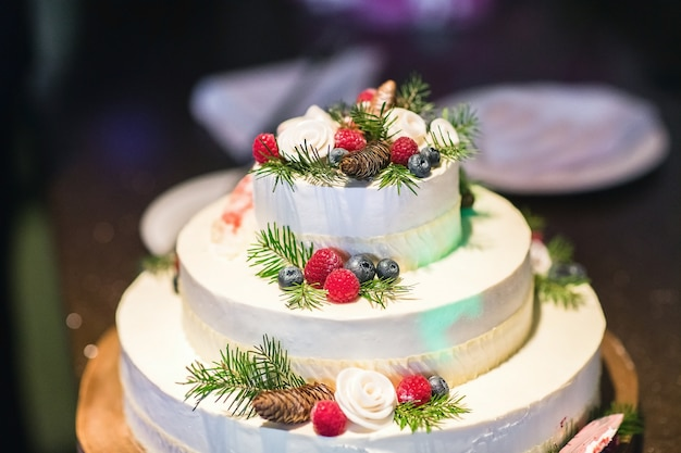 Gâteau d'hiver aux baies fraîches