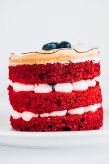 Gâteau avec meringue, biscuit et crème au fromage, gros plan.