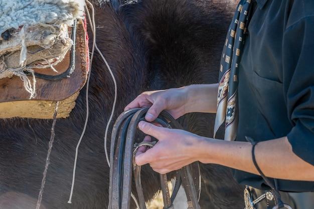 Gaucho argentin à cheval.