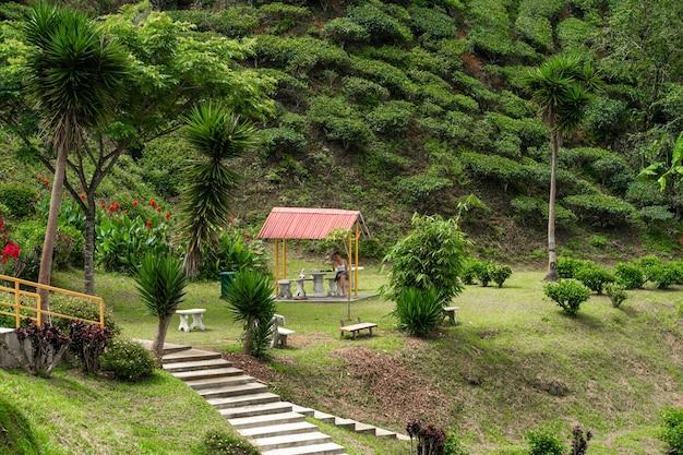 Gazebo dans un bel endroit de nature verdoyante. confort et sérénité avec vue sur les collines verdoyantes