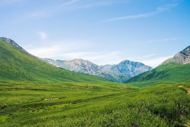 Géant des montagnes de neige au-dessus d'une vallée verdoyante avec prairie et forêt en journée ensoleillée. végétation riche des hauts plateaux au soleil. magnifique paysage de montagne d'une nature majestueuse.