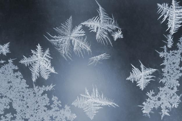 Le gel inhabituel sur une fenêtre d'hiver