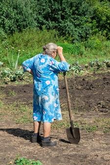 Les gens creusaient le jardin de pommes de terre