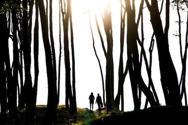 Les gens dans la sombre forêt mystérieuse.