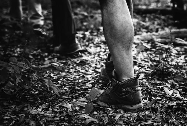 Les gens font du trekking dans la forêt