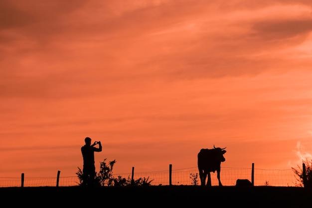 Les gens qui prennent des photos dans le pré, coucher de soleil au printemps
