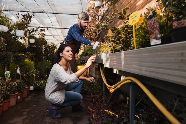 Les gens qui s'occupent des plantes