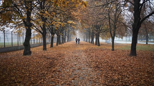 Les gens vont au loin dans le contexte d'un magnifique paysage d'automne du parc d'automne