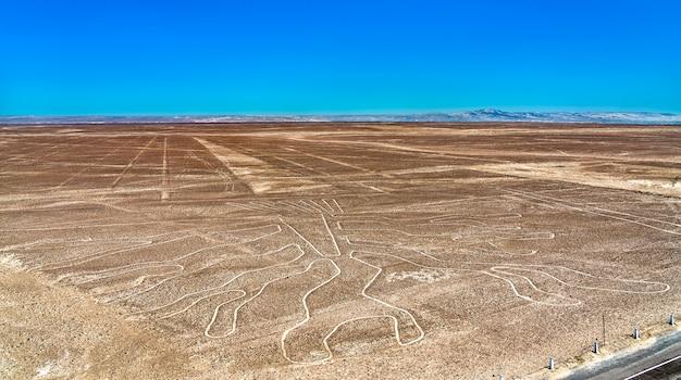 Le géoglyphe de l'arbre à nazca au pérou