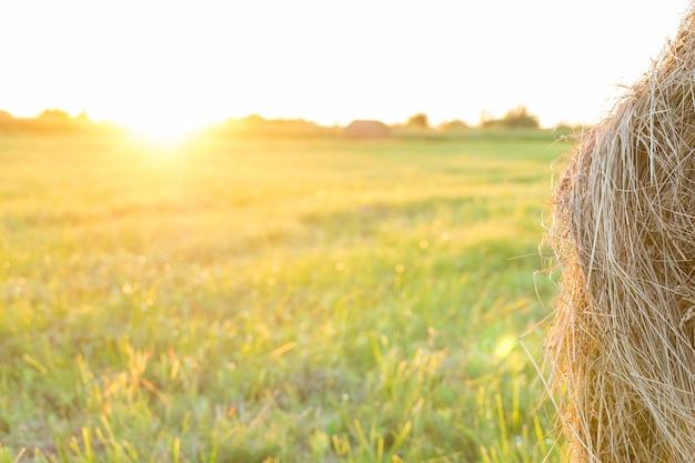 Gerbe de foin sur le champ au coucher du soleil