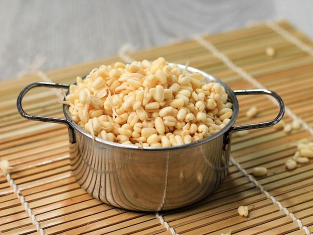 Germe de haricot mungo court pour rawon à base de haricot mungo. généralement appelé toge ou tauge
