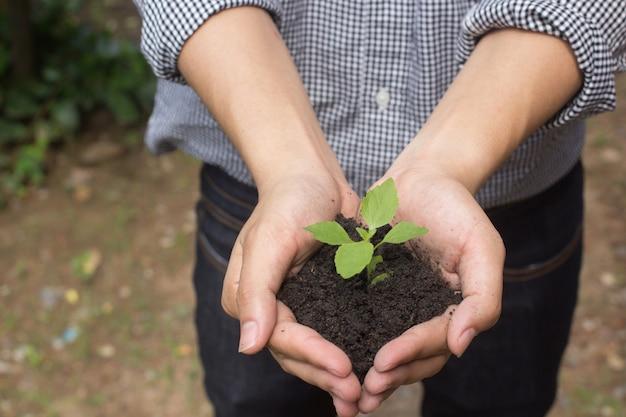 Gestes de l'homme agriculteur tenant une plante en pleine croissance pour sauver le monde
