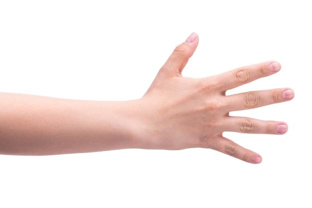 Gestes une main de personne montre cinq doigts