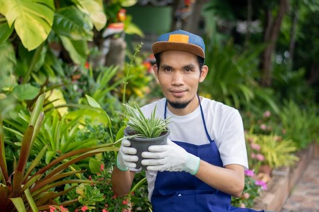 Gestionnaire de plantes ornementales boutique holding pot in shop