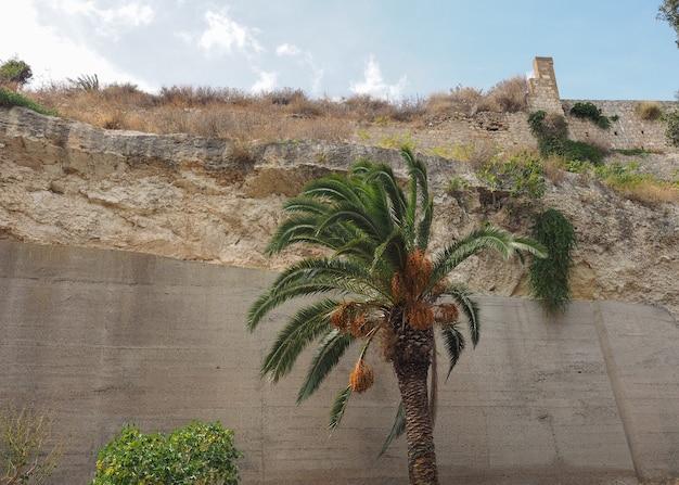 Giardino sotto le mura (jardin sous le mur) à cagliari