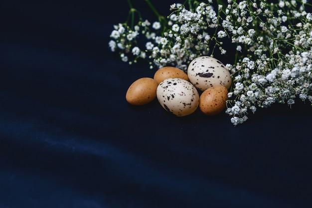 Gipsophila et petits œufs sur fond gris simple