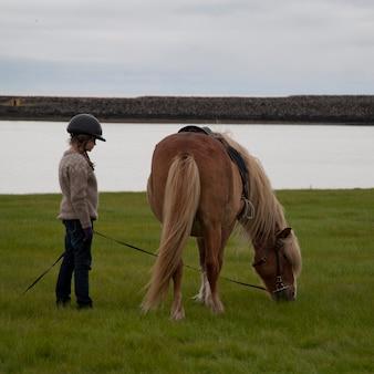 Girl, dans, casque, tenue, pâturage, islandais, cheval