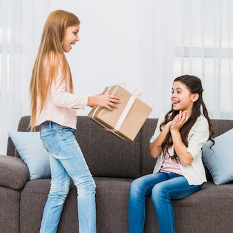 Girl, regarder, ami, donner, grand, coffret cadeau emballé, pour elle