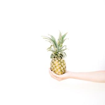 Girl's hand holding ananas