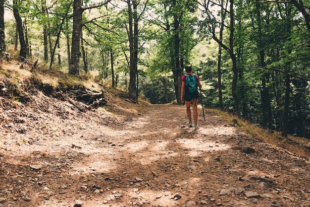 Girl scout avec sac à dos de randonnée dans la forêt.