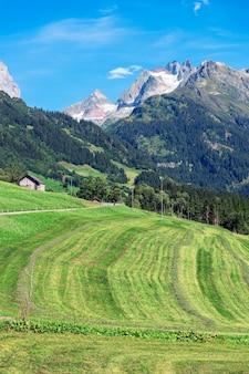 Glacier et montagne de neige avec paysage de terres vertes