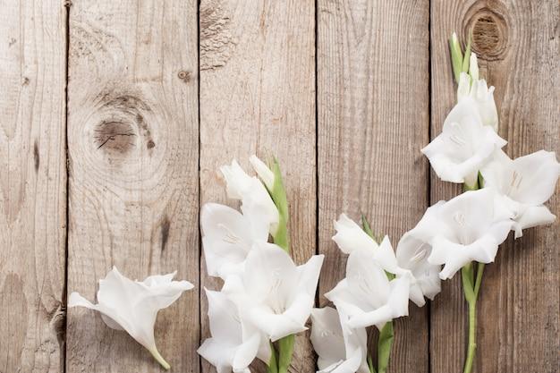 Glaïeul blanc sur une surface en bois