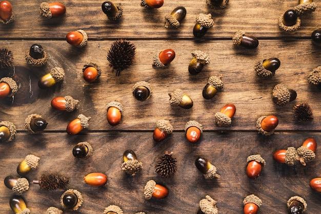 Glands plats et pommes de pin sur fond en bois