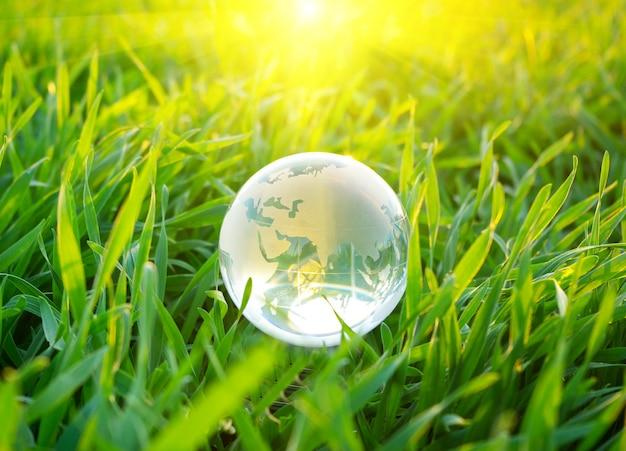 Globe dans l'herbe