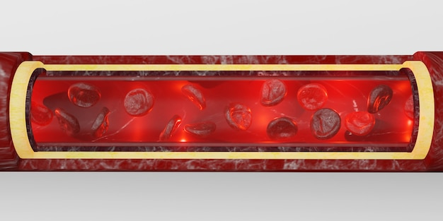 Globules rouges couche de peau veines illustration 3d chirurgie intravasculaire