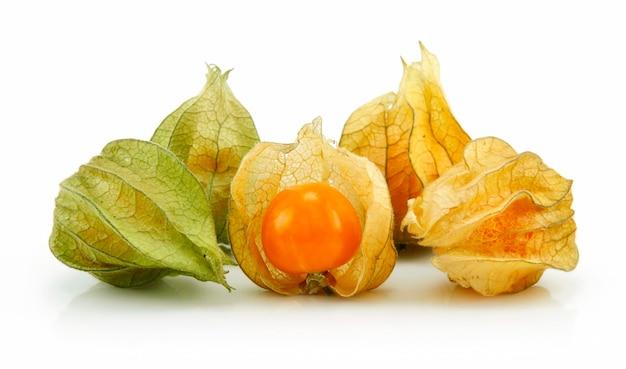 Gooseberry du cap (physalis) isolé sur fond blanc