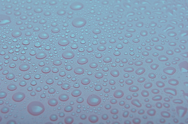 Gouttes d'eau sur un fond bleu rose