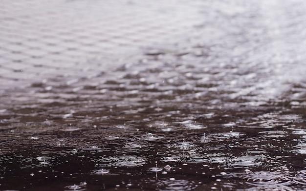Gouttes de pluie dans une flaque d'eau