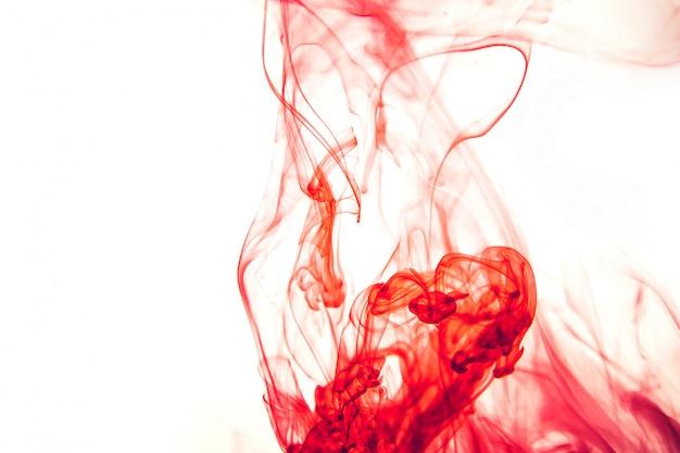 Gouttes rouge vif dans l'eau sur fond blanc