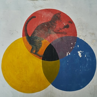 Graffiti d'un chat en trois cercles de couleurs