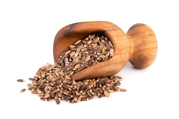 Graines de chardon-marie dans une cuillère en bois, isolé sur fond blanc. silybum marianum, chardon écossais ou chardon marial.