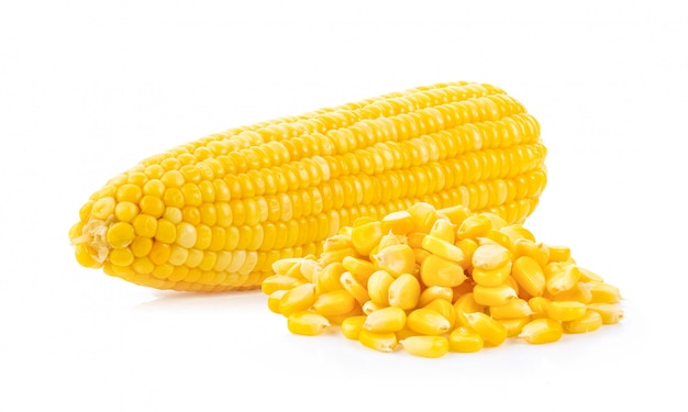 Graines de maïs isolées