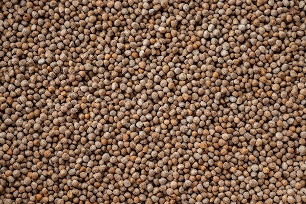 Les graines de perilla en gros plan sont des grains qui peuvent être consommés avec des graines et des feuilles